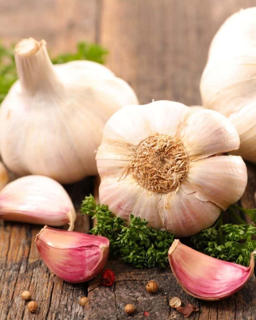 immunity boosting garlic